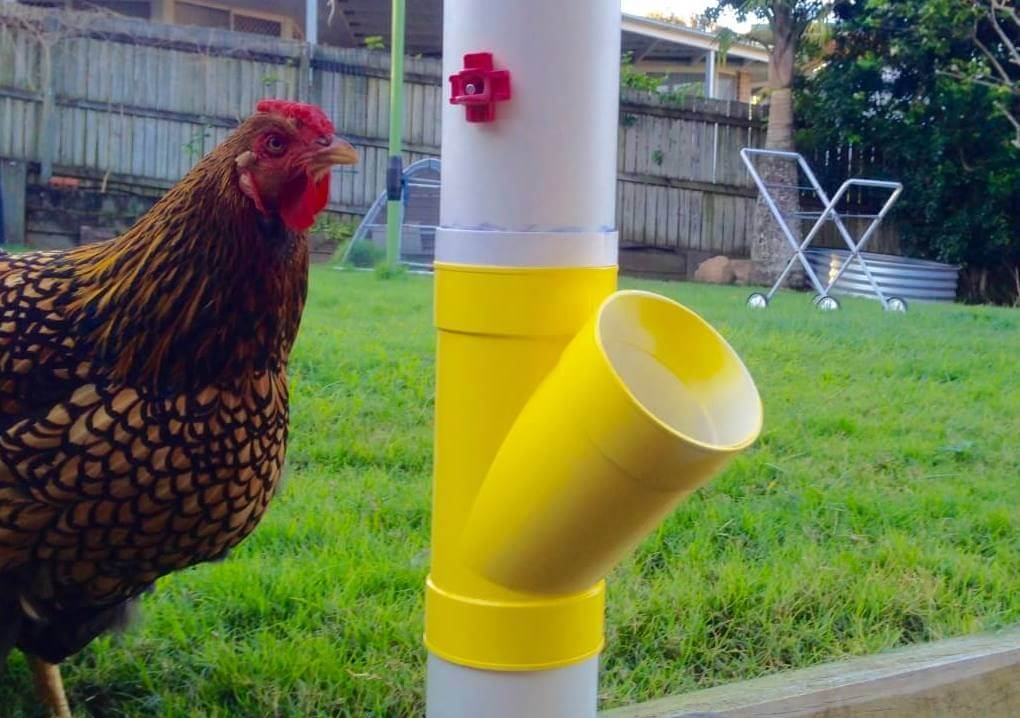 No worries waterer diy manual patch to table for Diy chicken feeder light